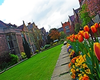 University building and tulips