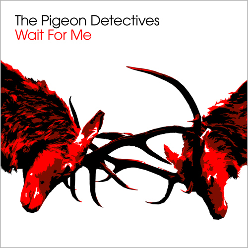 Image result for pigeon detectives album cover