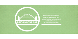 Bridging the Gap transition campaign logo